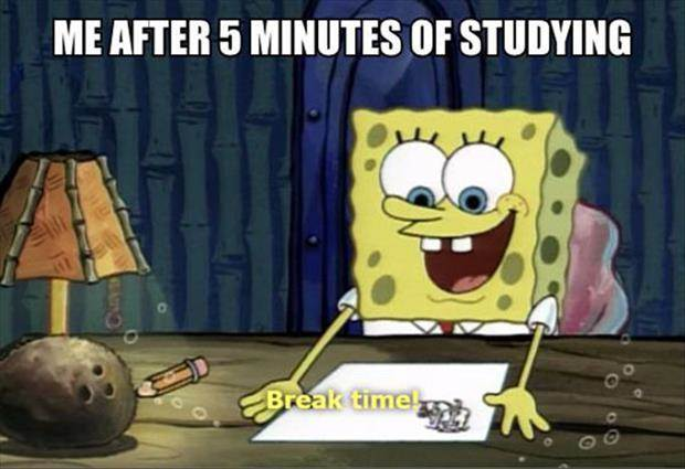 7 seven memes that describe life around midterms meme spongebob me after five minutes of studying break time