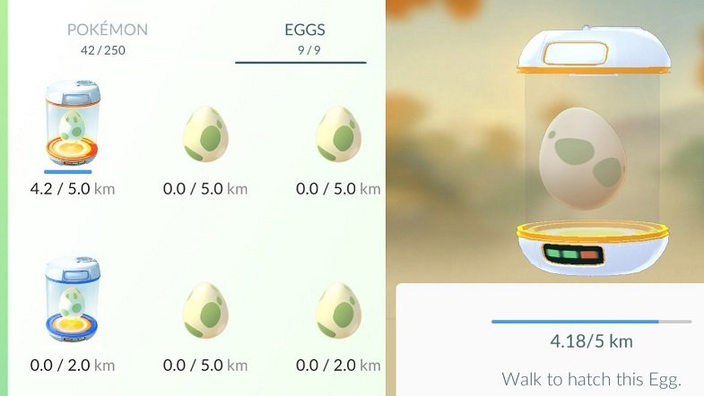 Pokemon-Eggs.jpg