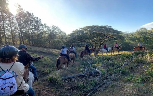 costa rica horse jjc joliet junior college students study abroad in costa rica
