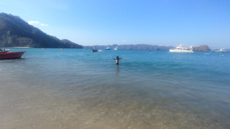 isla tortuga turtle island jjc joliet junior college students study abroad in costa rica