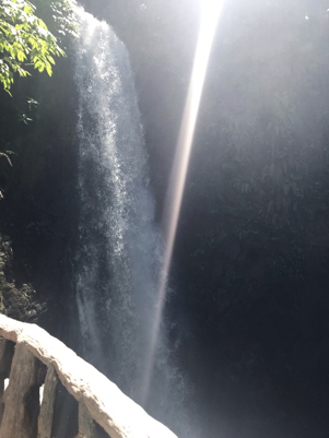 la paz waterfall gardens jjc joliet junior college students study abroad in costa rica