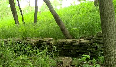 5 things to spot on jjc's nature trails jjc joliet junior college limestone wall civil war