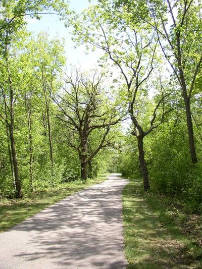 nature trail2 your jjc bucket list joliet junior college