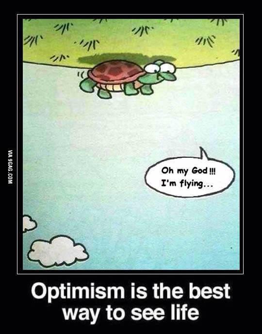 turtle optimism best way to see life  joliet junior college jjc 10 motivators