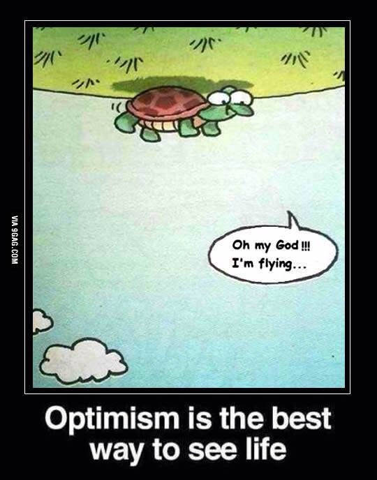 turtle optimism best way to see life  joliet junior college jjc 10 motivators
