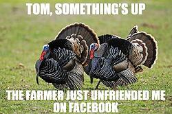 Thanksgiving Meme JJC